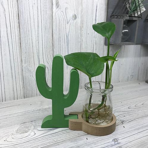 Hydroponic Home Décor - Cactus Pot