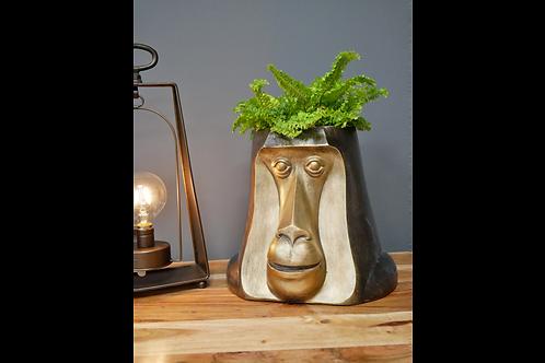 Monkey Head Plant Pot