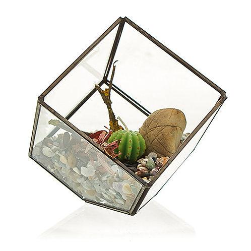 Glass Terrarium - Cube on Corner