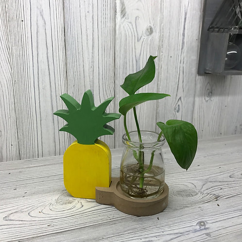 Hydroponic Home Décor - Pineapple Pot