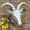 Thumbnail: Gazelle Head Statue On Silver Base