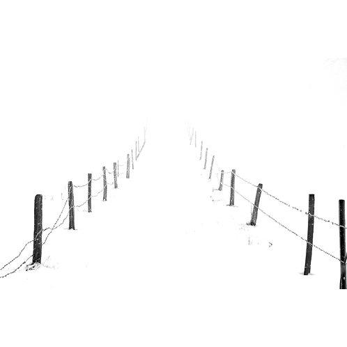 Winter Showcase, Switzerland