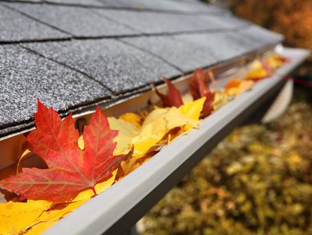 Autumn Maintenance Tips