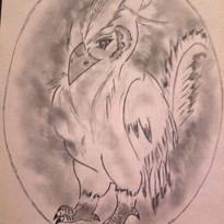Bébé phoenix
