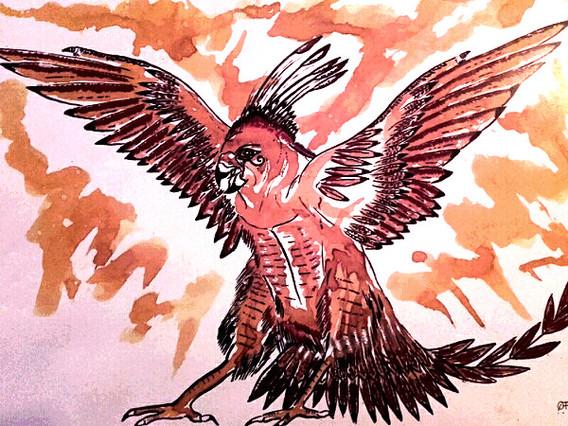 Le fauco-phoenix
