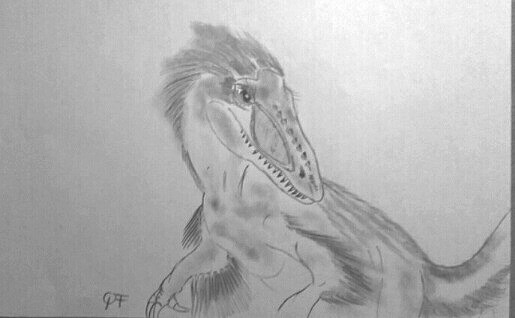 Dinosaure carnivore à plume