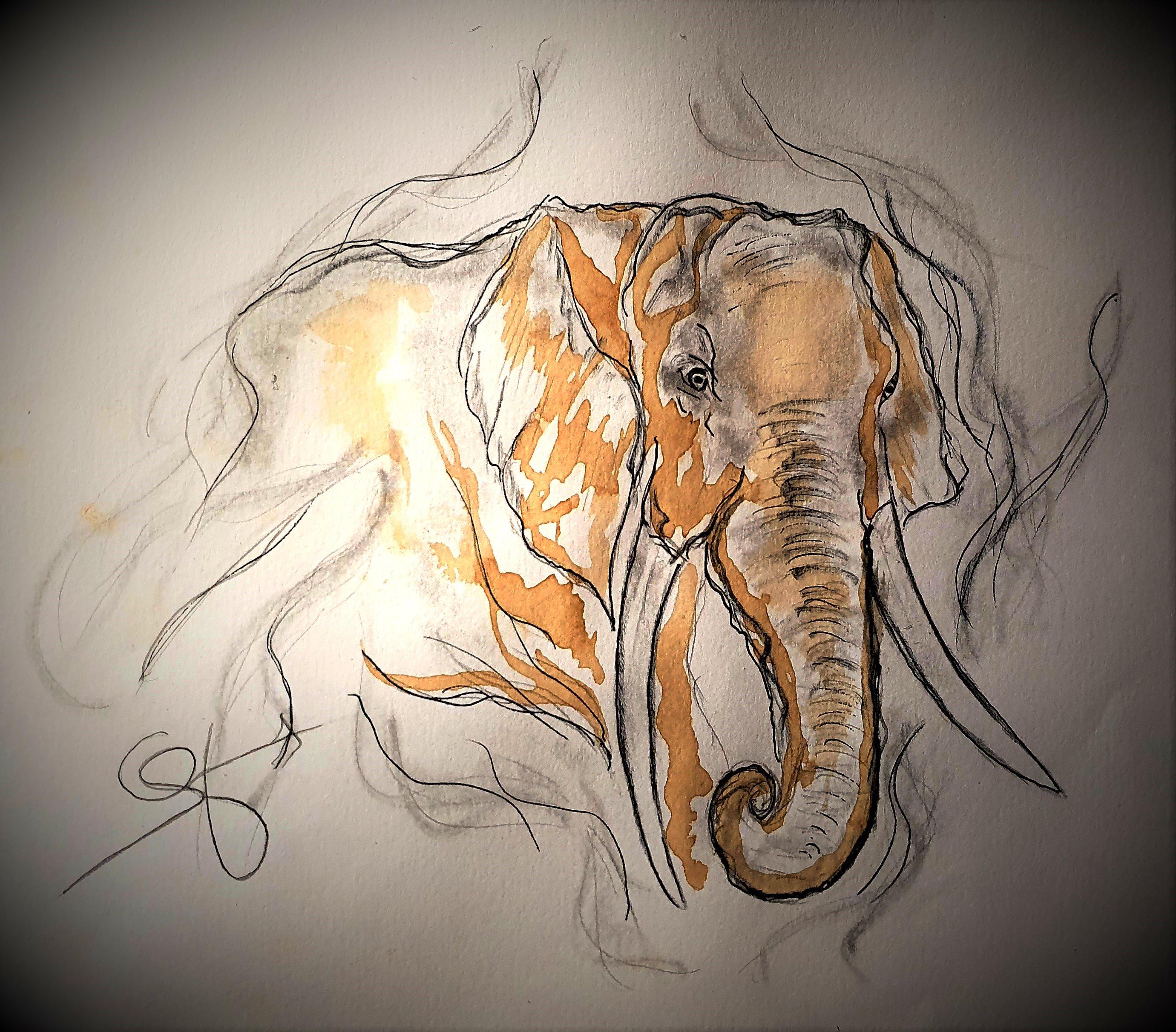 Le mirage de l'éléphant