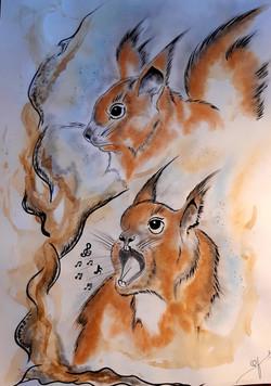 L'esprit de l' écureuil