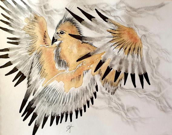 Le phœnix à quatre ailes