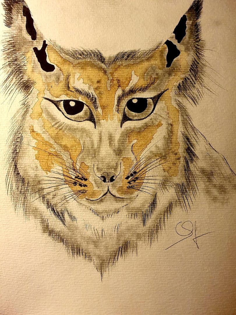 L'esprit du lynx