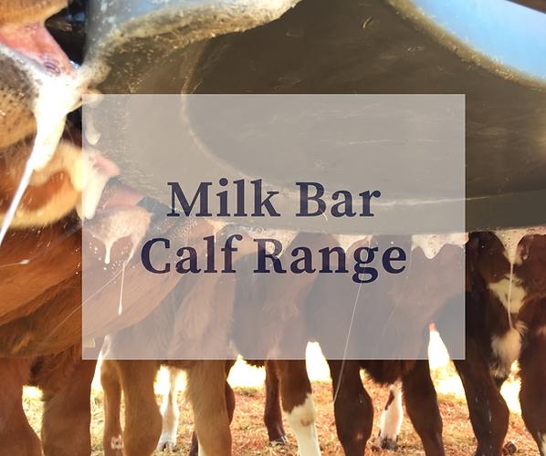 Milk Bar Calf Range.png