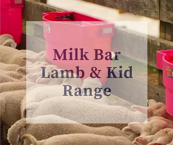 Milk Bar Lamb and Kid Range.png