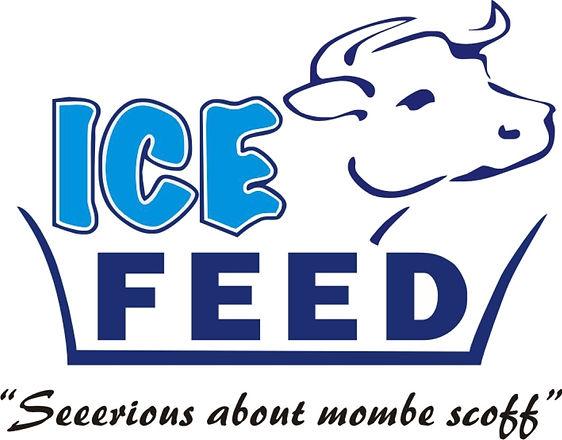ICE FEED .jpg