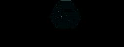 logo_solarsuccess_logo.png