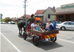 HORSE & CART 2012_edited.jpg