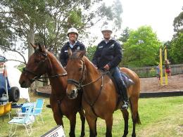 POLICE HORSES 2012_edited.jpg