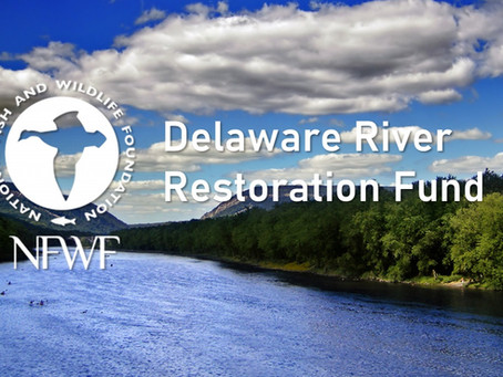 Delaware River Restoration Fund: Implementing Data-Driven Agriculture Conservation Practices
