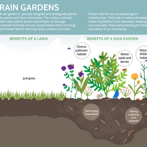 Rain Garden Rebate Program - March 30th