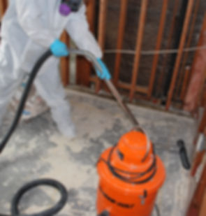 Mold-Removal-Services.jpg