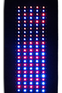 light-therapy-red-blue.png