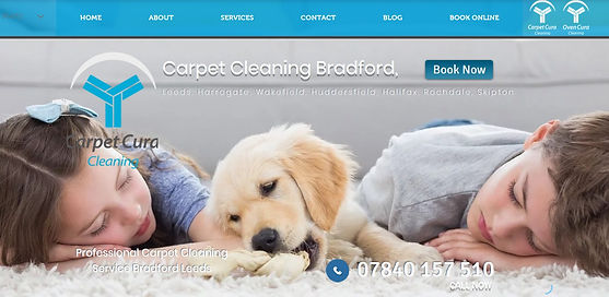 Carpet Cleaning Website.jpg