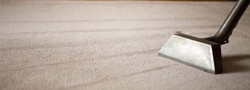 carpet-cleaning-cost