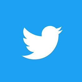 Twitter 400x400.jpg