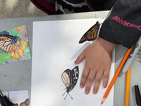 butterfly portrait.jpg