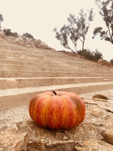 Amphitheater pumpkin.jpg
