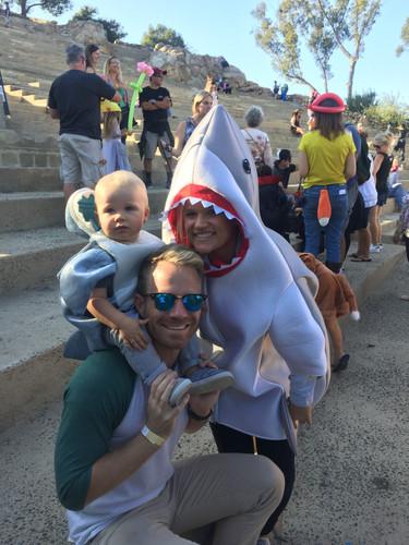 Shark Family.jpg