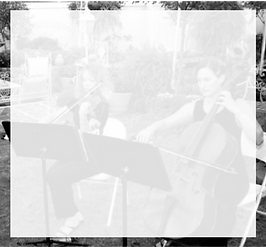 Photo Portfolio of Musicians Playing at Wedding
