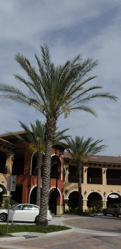San Marco Plaza