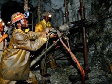 Zimbabwe: Mnangagwa Must Create a Sovereign Wealth Fund