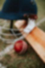 ball-baseball-baseball-bat-1614992 (1).j