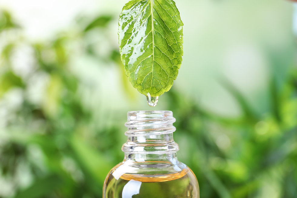 Essential oil dripping from mint leaf in