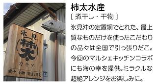 19秋柿太.png