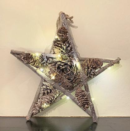 Twiglet Star