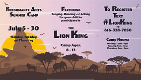 Lion King Summer Camp - Over the Top