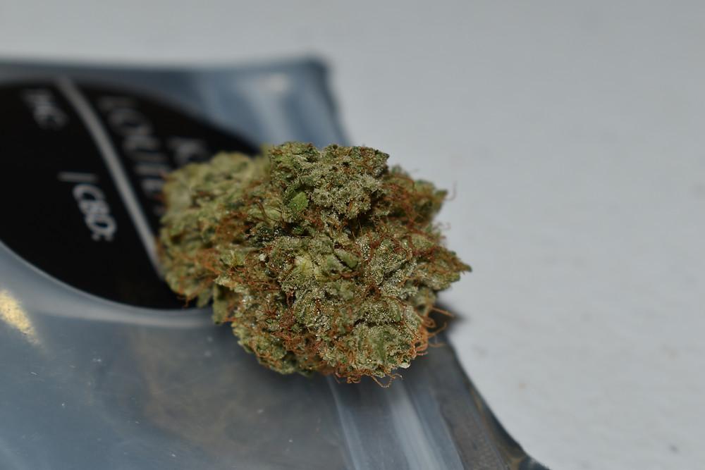 medical marijuana, cannabis, cbd, hemo ,cbd oil, mesa, arizona, medical card, canada, weed