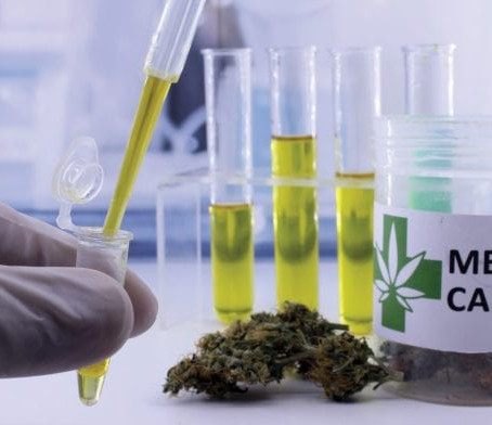 The cannabis industry can be characterised by one thing – relentless change
