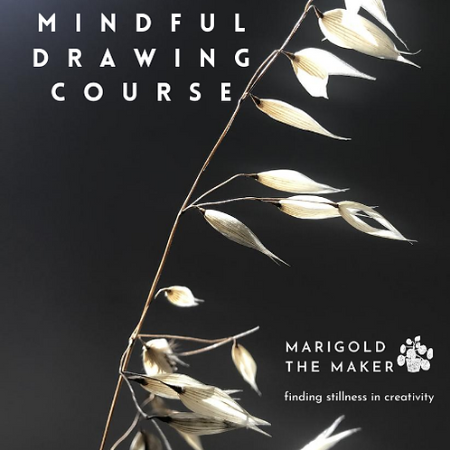 Mindful Drawing Course