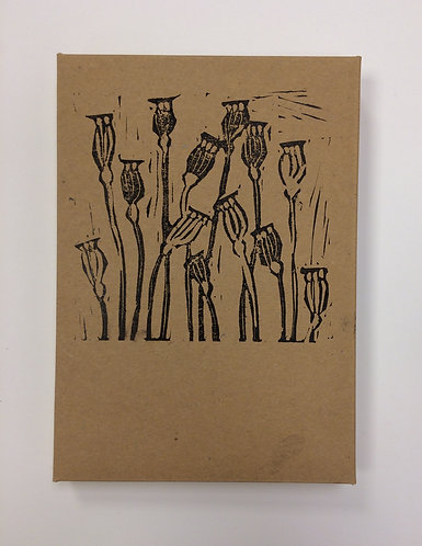 Box of 5 Greetings Cards - Seed Pod Series Designs
