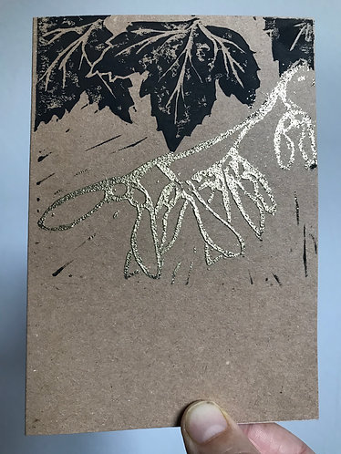 "Pack of 5 ""Shiny Sycamore"" Christmas Cards"