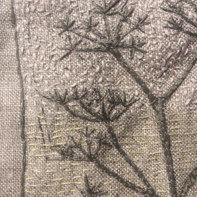 Fennel Seed Macro