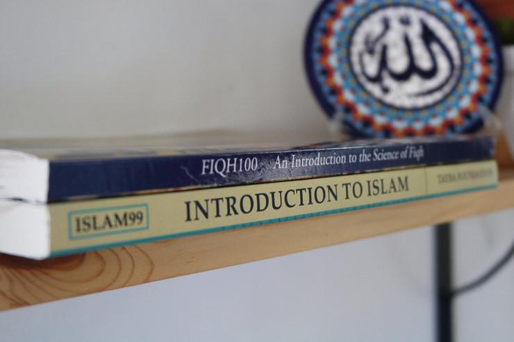 tayba_books_shelf.jpg