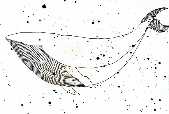 Illustration -Balea-