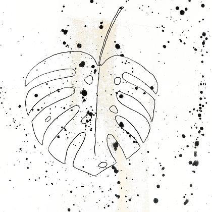 Illustration -Monstera Deliciosa-