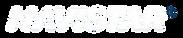 navistar-logo copy.png