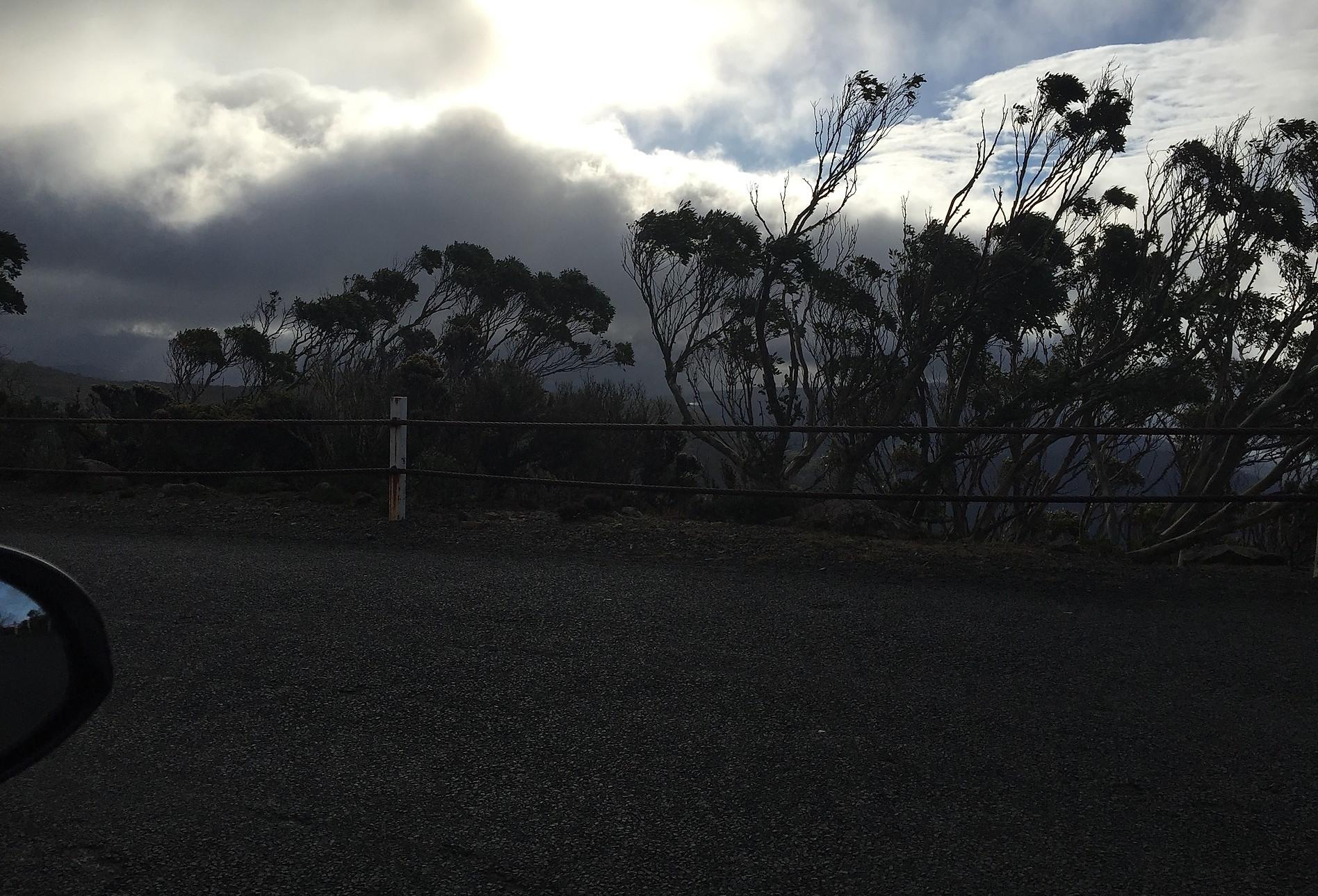 Дорога на гору Веллингтон— Тасмания 2017 — Блог о путешествиях Сергея Чеботова