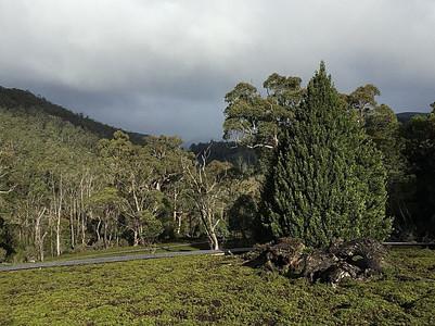 Тропа от Dave в парк — Тасмания 2017 — Блог о путешествиях Сергея Чеботова